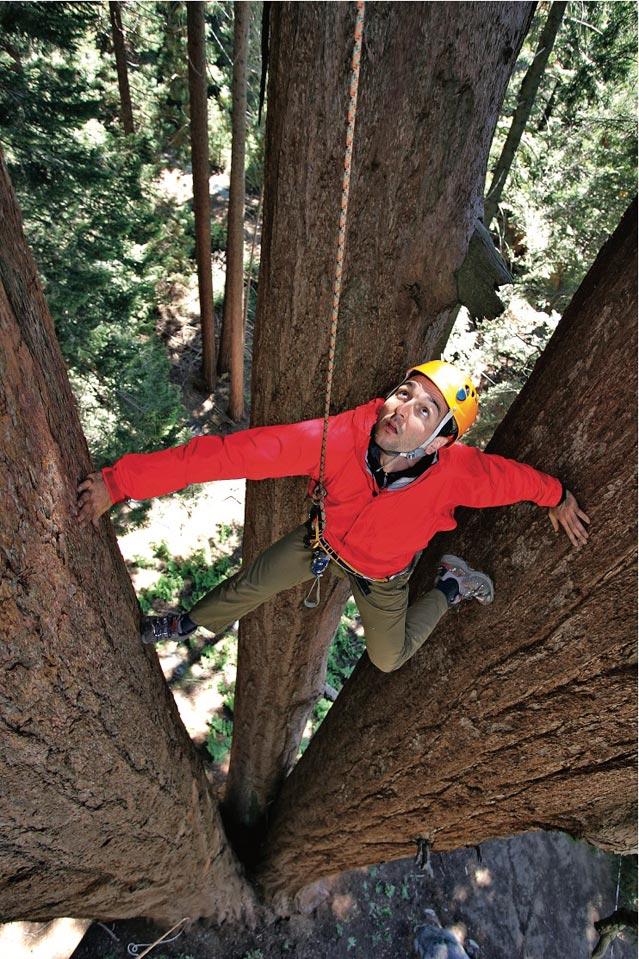 Climbing at Sequoia Crest, California