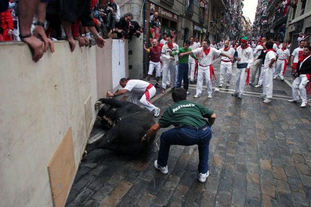 Bull stuck in La Curva