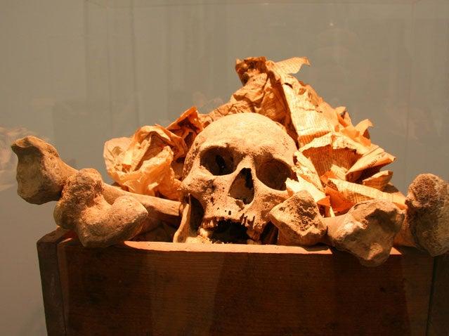 skeleton bones cannibalism survival apocalypse