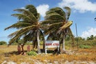 Eneu Island's welcoming committ