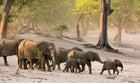 Namibia Africa Susuwe Islands I