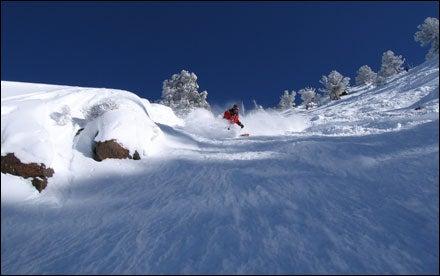 Carving fresh tracks at Snowbird, Utah