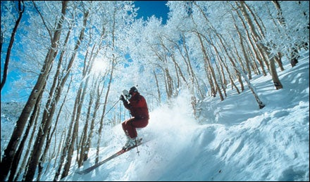 Skiing the trees at Aspen, Colorado