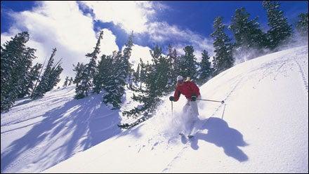 Skiing powder, Solitude Mountain, Utah