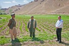 A potato farmer being interviewed at one of his fields in Bamyan Province. Potatoes have become the main cash crop for the province, contributing millions of dollars to its economy every year.