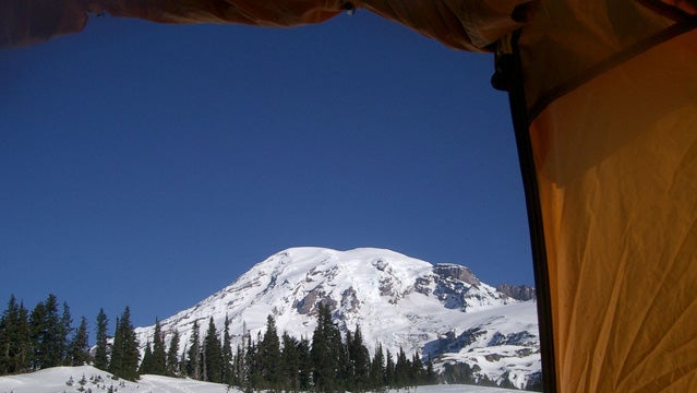 A view of Rainier from a tent.