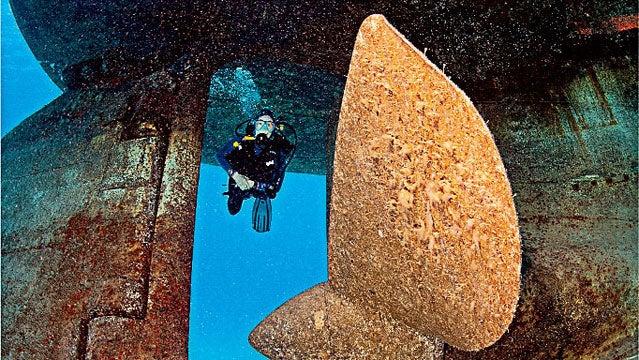 kittiwake wreck winter destinations scuba diving