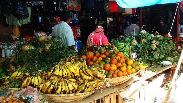 MOLE MOUNTAIN BIKING MEZCAL food tourism oaxaca mexico destinations