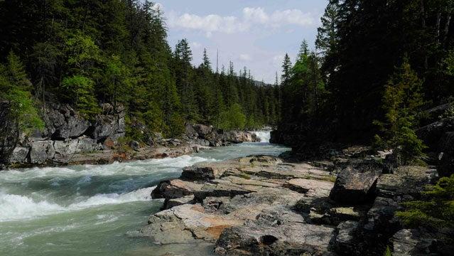Henry's Fork River in Idaho.