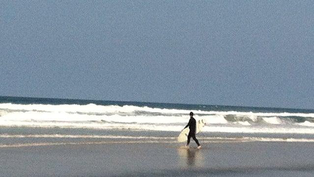 surfing san diego vacation baby panda beaches water ocean great beaches california
