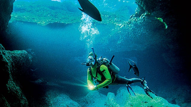niue south pacific island island trips beach beaches vacations travel diving