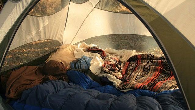 quixote pillow camping romance