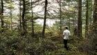 Noma willows inn blaine Wetzel local organic lummi island washington state