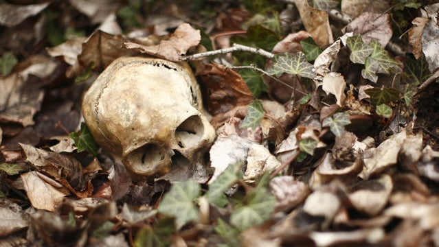ways to die in the wild skull forest ground leaves graves skull forest