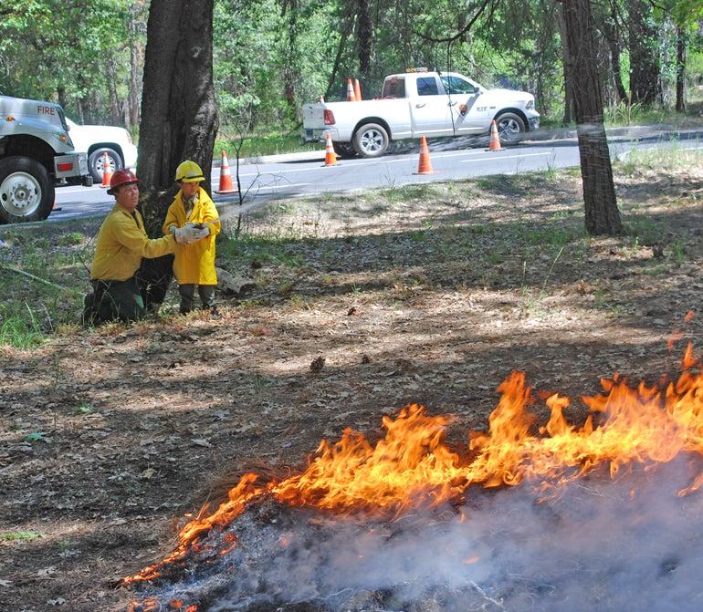 yosemite yosemite national park gabriel lawan-ying honorary park ranger junior ranger fire ranger brushfire wildfire make-a-wish