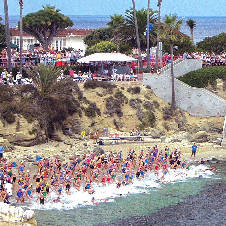 la jolla rough water swim race report