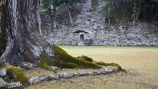 honduras ruins rainforest copan ruins ancient archaeology central america travel vacation