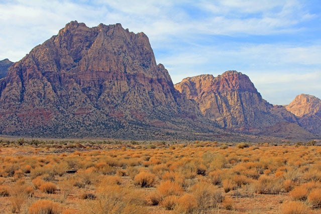 View from the bottom of Red Rock Canyon.