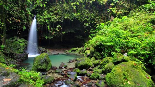 dominica caribbean travel winter getaways ecotourism