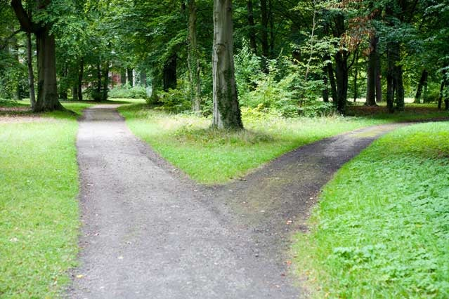 Forked path