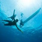 The underwater world of Papua new Guinea
