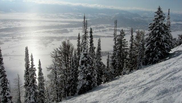 Jacksonhole wyoming skiing mountain snow resort spring break