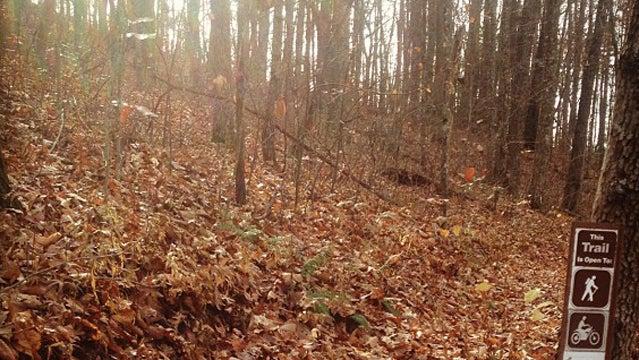 sheltowee trace trail hike drunk hiking drinking