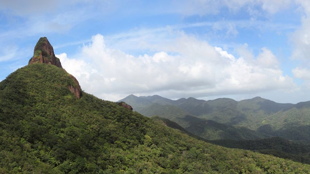honduras rainforest travel central america vacation