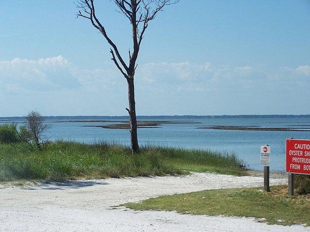 St. George Island State Park, Florida.