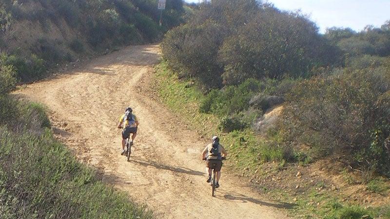 Mountain Bikers Mullholland Drive Marvin Braude