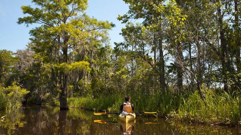 OutsideOnline swamp kayak Okefenokee campsites southeast