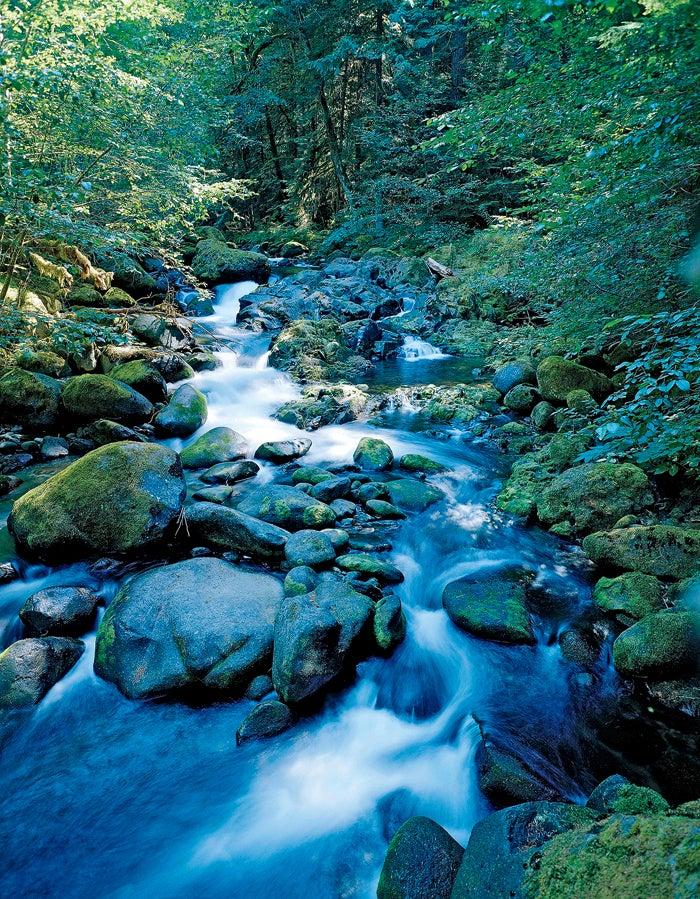 french pete creek barry lopez wilderness act