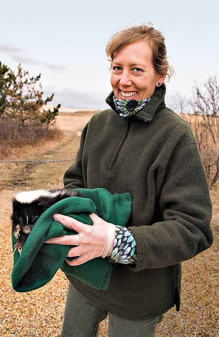 Conservation biologist Luanne Johnson. Johnson says that places where humans live are ideal for skunks.