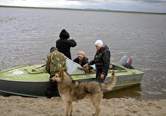 The Samoilovskiy shore.