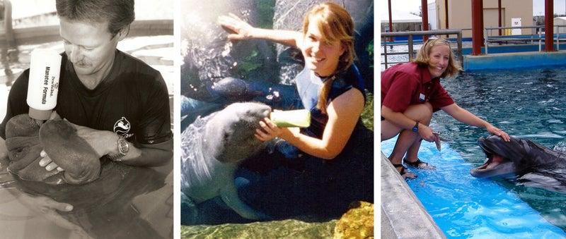 seaworld, animal care, blackfish, jim horton, cynthia payne, krissy dodge, dolphin, manatee, outside magazine online