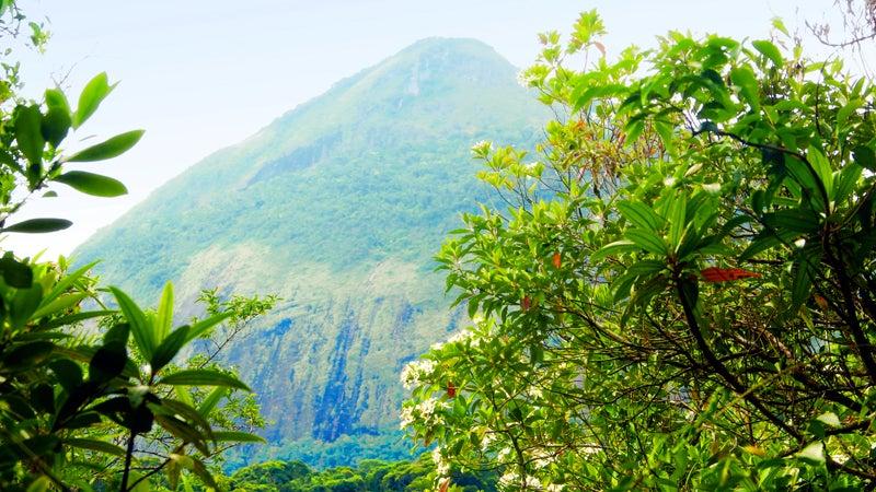 brazil rio de janeiro soccer football world cup fifa climb hike swim adventure travel exploration tijuca national park