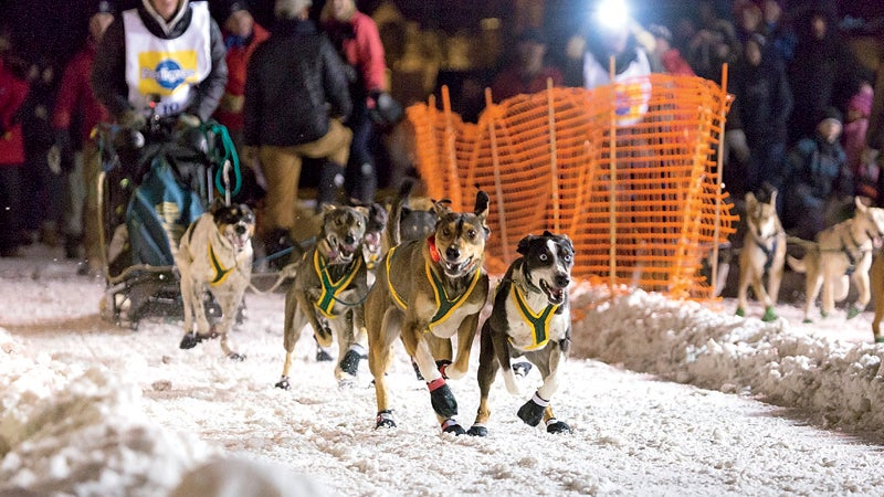 2014 animals cold dog dogs dog sled race excited fun happy international pedigree stage st ipsssdr ipsssdr 2014 jackson jackson hole night north america race racing run running sled dogs snow start starting line usa west western winter wyoming skiing winter buyers guide buyers guide buyers guide 2015 destinations outside outside online outside magazine outdoors winter travel escpes apres hot spots doubling down jackson hole wyoming breckenridge colorado aspen snowmass colorado whister british columbia party towns ski towns resort towns park city utah mangy moose million dollar cowboy x games tommy africa canyons resort spring gruv gordy mendroz