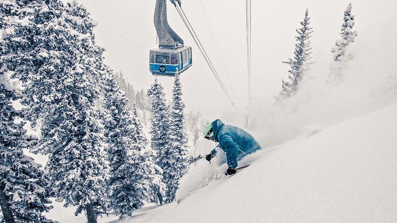 Ben Wheeler Utah powder ski skiing