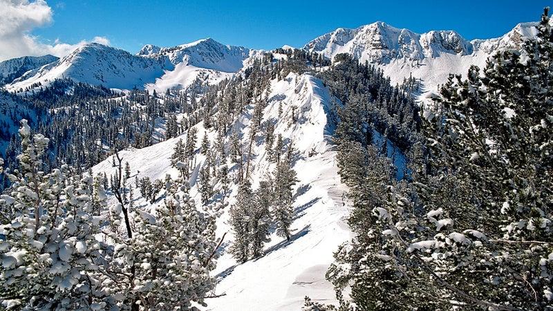 ; ski; skier; skiing; snow; spo horizontal mountain united states united states of america