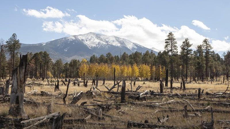 OutsideOnline Flagstaff Arizona snow peaks mountains best towns high-altitude running