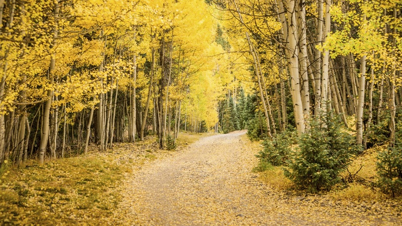 OutsideOnline autumn Mancos Colorado San Juan Mountains trail running best towns high-altitude