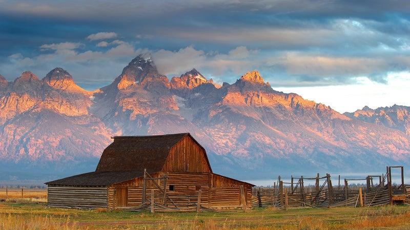 _Top-Pics _Top-Pics-Nature @Summit Jackson Hole Larry Johnson LJ Nature Portfolio