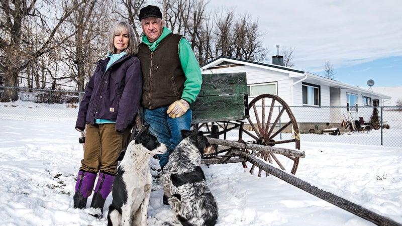 Montana Weisner Wolves agriculture farm farming predator ranch ranchers ranching rural