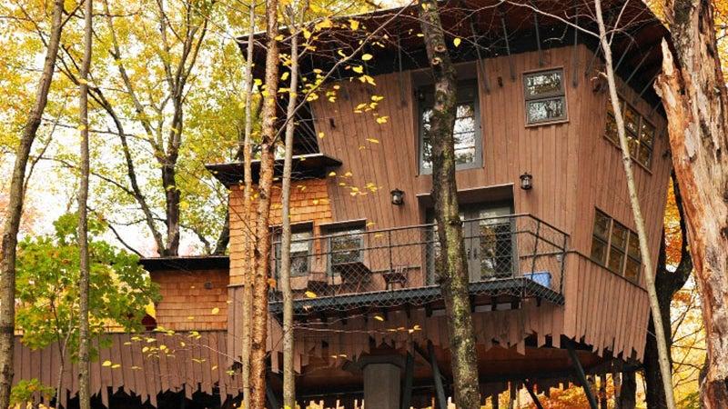 winvian treehouses travel outside