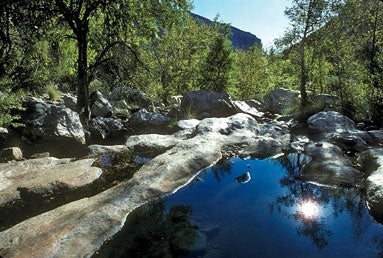 Sabino Canyon, Tucson