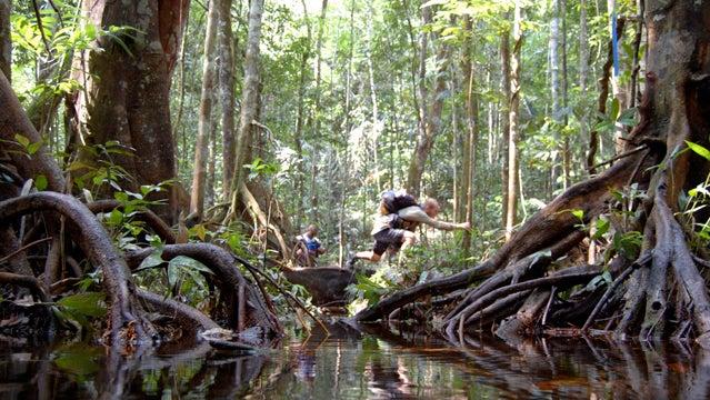 jungle marathon africa trail running tree roots marathon