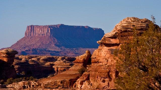 moab trail marathon trail running mesas moab utah