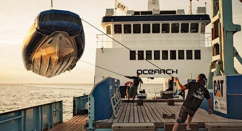 ocearch shark chris fischer