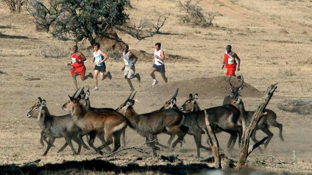 safaricom marathon africa trail running marathon
