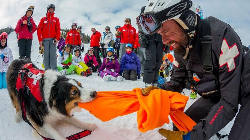 Aspen Highlands Dan Bayer Patrol Patrol Dogs Ski Patrol outside Best Places to Work